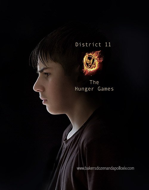 Hunger Games Blog
