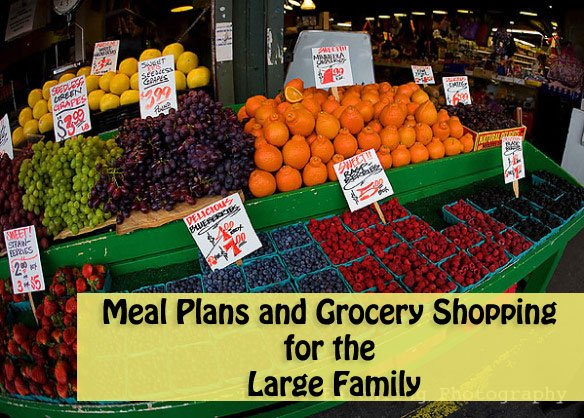 Meal Plans and Grocery Shopping for the Large Family
