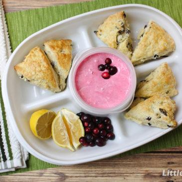 Cranberry Scone Recipe