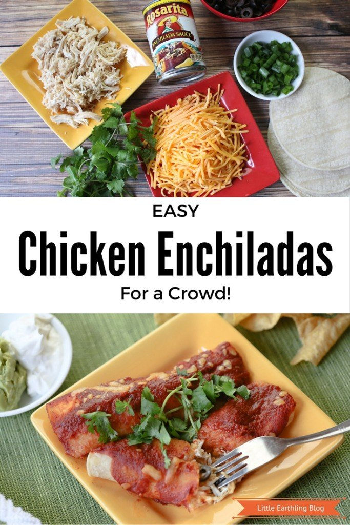 The easy chicken enchilada recipe feeds a crowd and is so good it will have your friend and family begging for more!