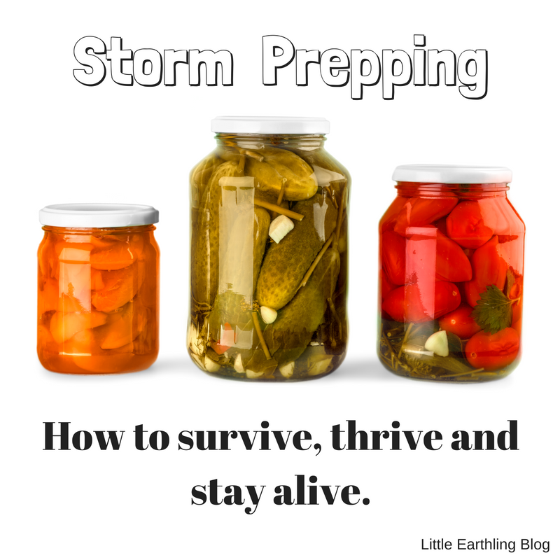 Storm Prepping: How to survive, thrive and stay alive. Large family edition