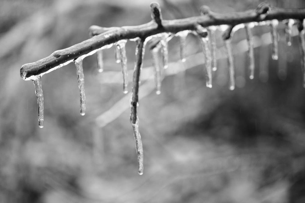 A few tips on how to survive an ice storm with kids.
