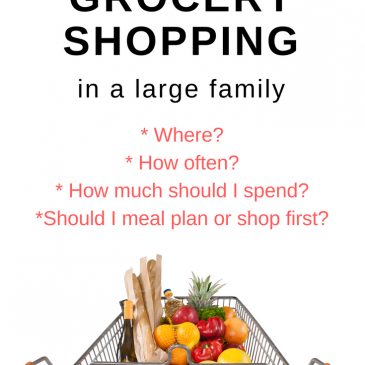 Meal Plans and Grocery Shopping in a Large Family