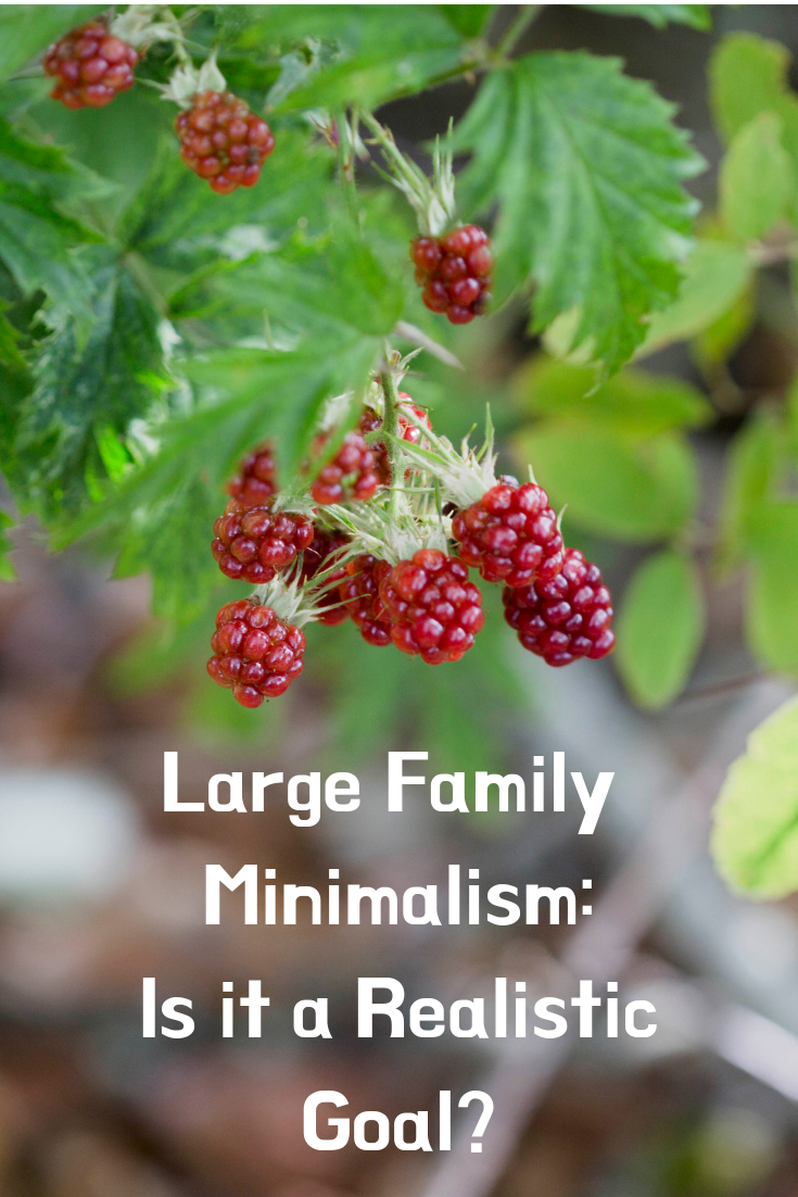 Large Family Minimalism: Is it a realistic goal?